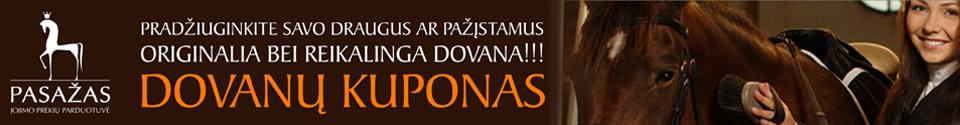 Kategorijos banneris