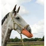 Apsauginė priemonė žirgams