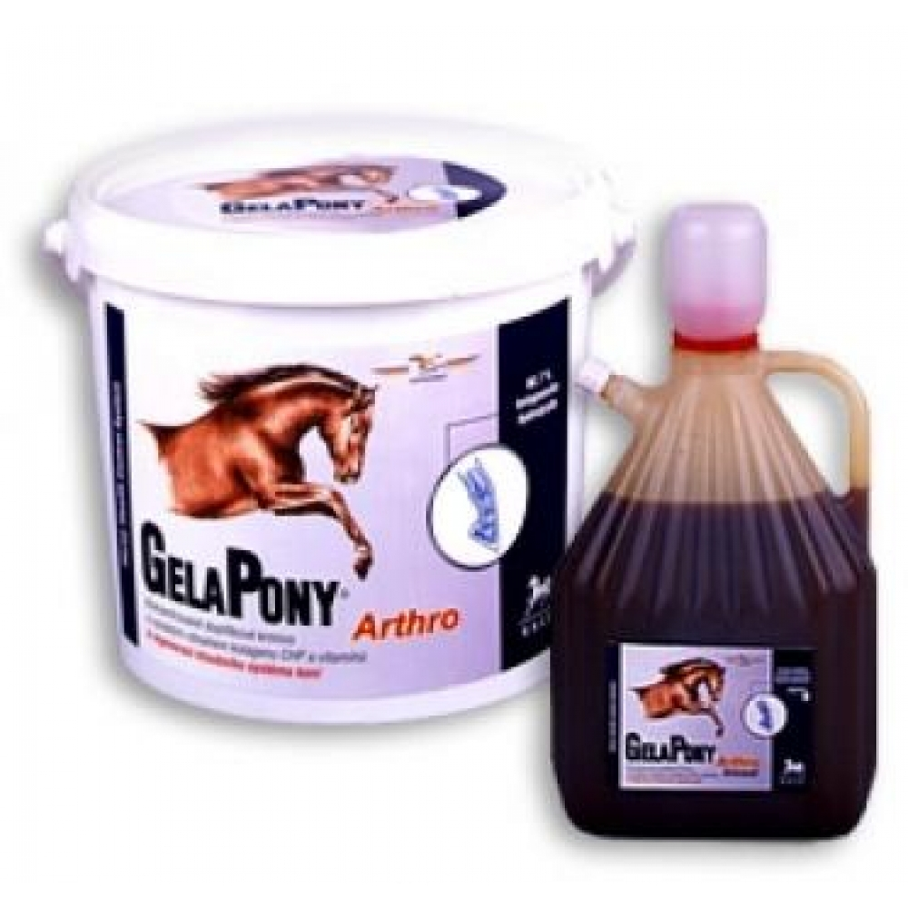 GelaPony Arthro