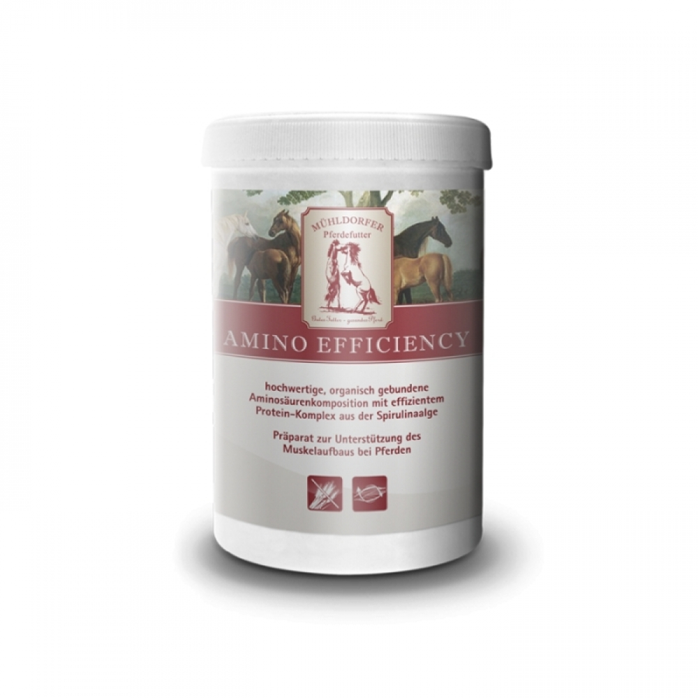 Maisto papildas Amino Efficiency, 750g