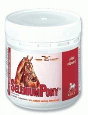 SeleniumPony