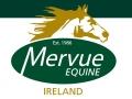 Mervue Equine