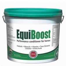 Vitaminų ir mineralų kompleksas EquiBoost