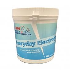 Maisto papildas Everyday Electrolyte, 1kg