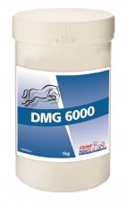 Maisto papildas DMG 6000, 1kg