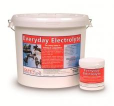 Maisto papildas Everyday Electrolyte, 20kg
