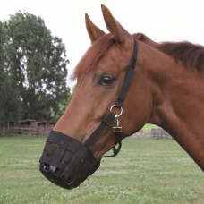 Žirgo priežiūros priemonės