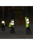Kojų apsaugos Reflex, priekinės