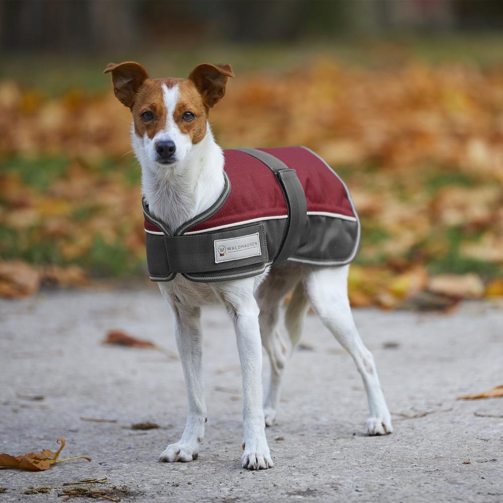 Šuns apsiaustas Comfort Line, 200 g