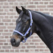 Kantaras Little Horse