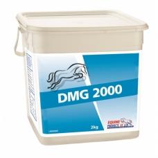 Maisto papildas DMG 2000, 2kg