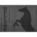 Durų kilimėlis Welcome