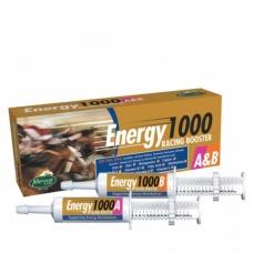 Energetinė pasta Energy 1000A