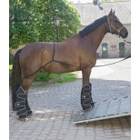 Pagalbinė priemonė pervežant žirgus