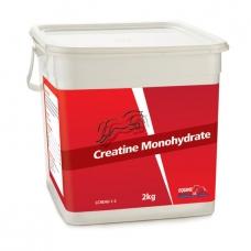Maisto papildas Creatine Monohydrate