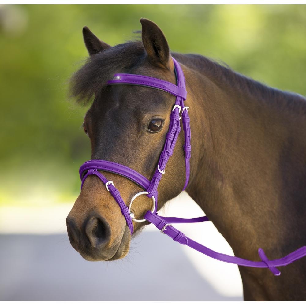 Kamanos Unicorn 2