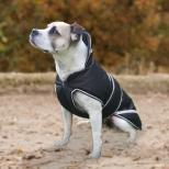 Šuns apsiaustas Protection
